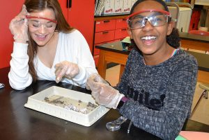 Students with owl pellets