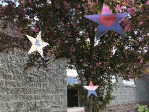 Stars of HOPE