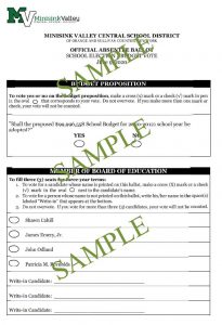 Absentee ballot sample