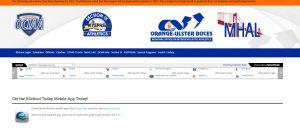 Section IX website snapshot